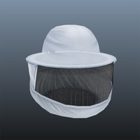 beekeeper mask