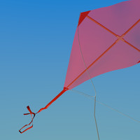 3d model kite wind