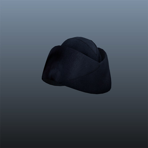 air force hat 3d model