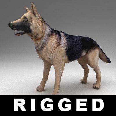 3d rigged german shepherd