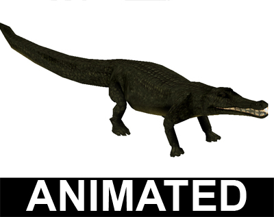 blend aligator jacaré crocodilo