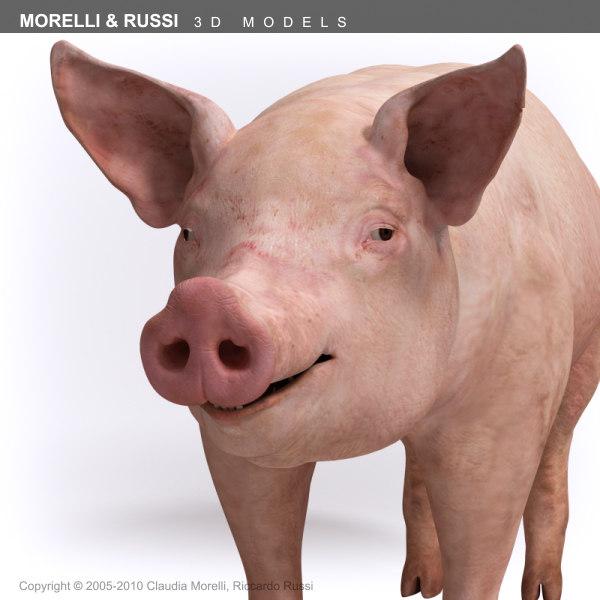 maya morelli russi pig
