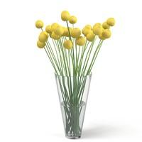 3d billy balls yellow model