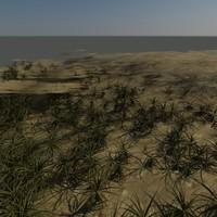 3d model small grass