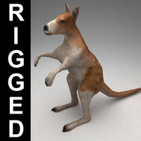 3d model rigged kangaroo