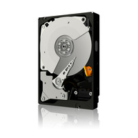WD Caviar Black Hard Disk Drive