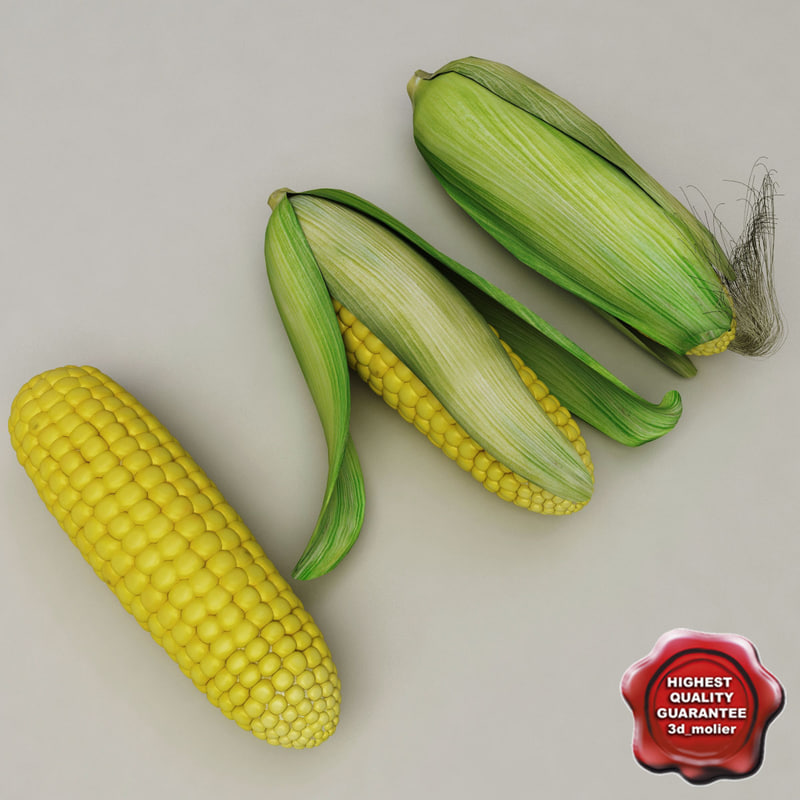 3d model corn set modelled