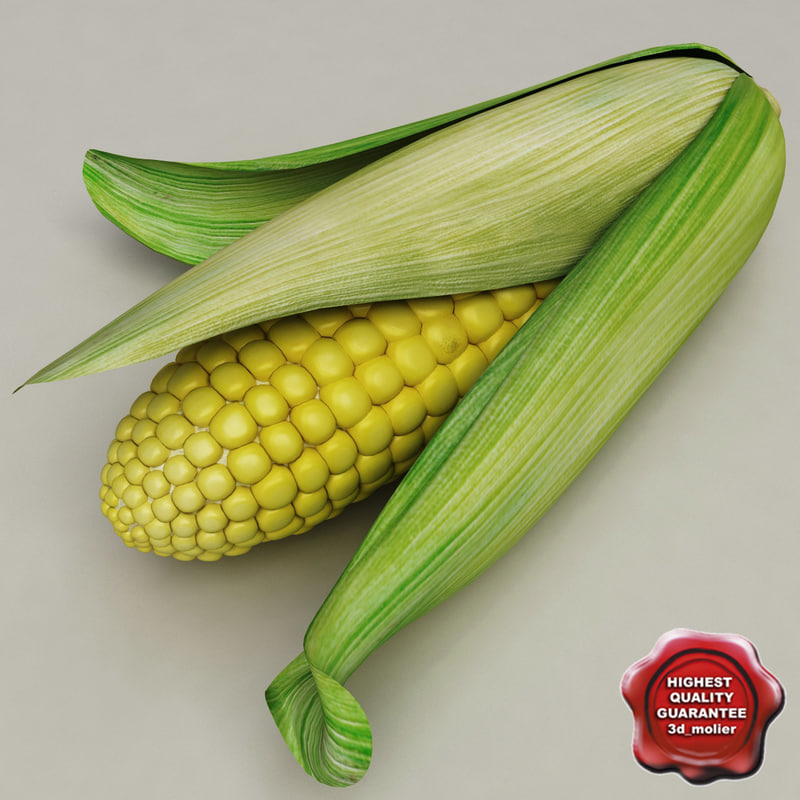 3d corn v2 model