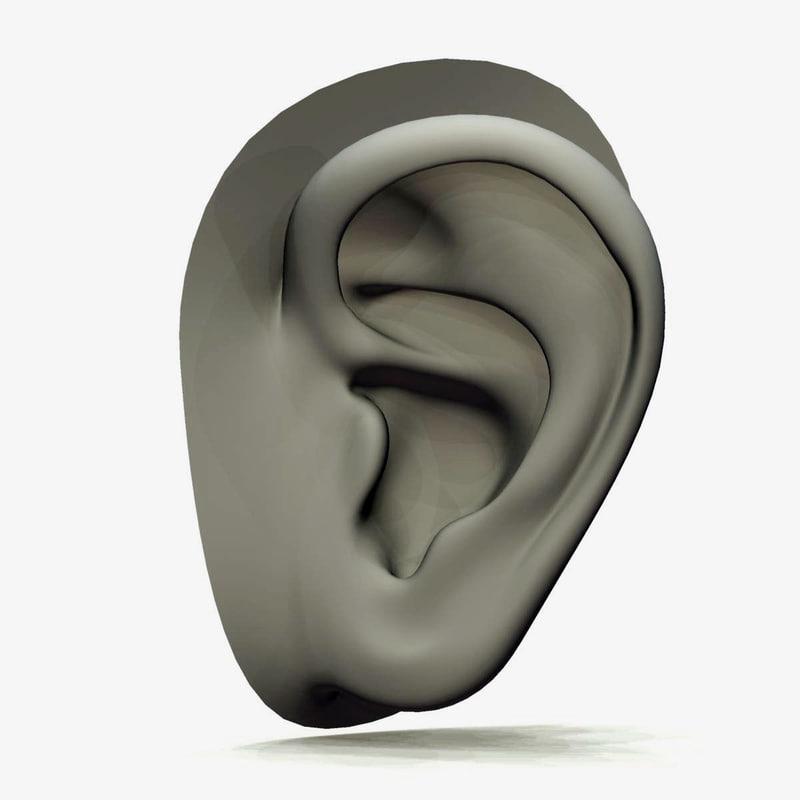 max realistic ear