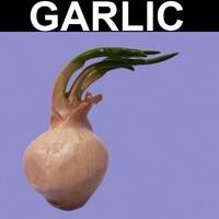 max garlic