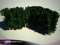 2 bushes (D2.C1.07(pt 1 and 2)
