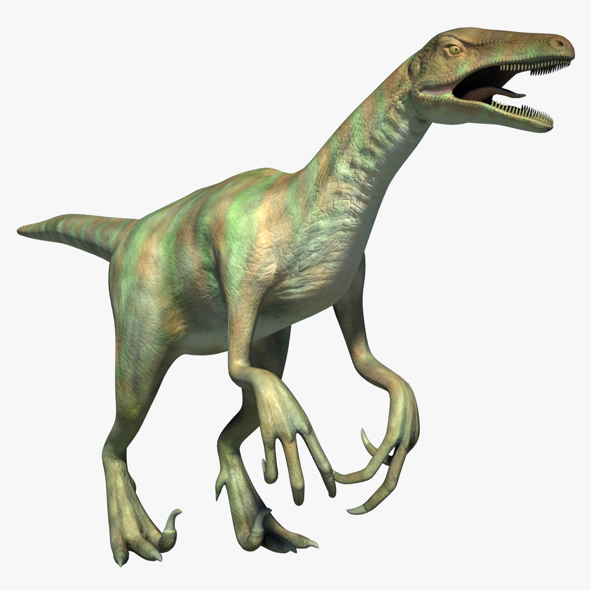 dinosaur adasaurus raptor