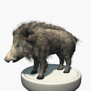 3ds max furry wild boar
