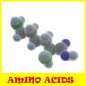 proteinogenic amino acids 3d model