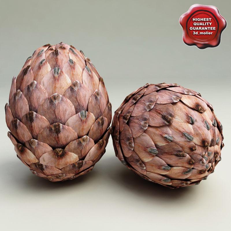 fir cone 3d max