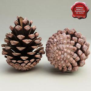 fir cone v2 3ds