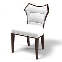 Contemporary modern Dining side chair
