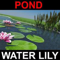 pond grass 3d max