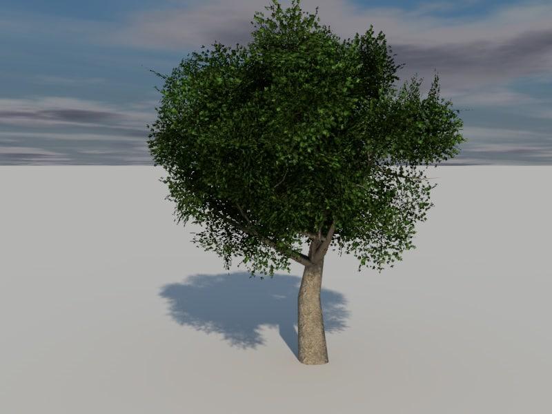 3d model foliage trees