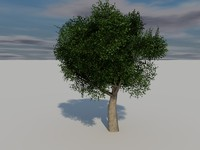 Foliage tree Collection 01