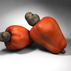 cashew - tropical fruit 3d model