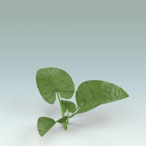 free leaves 3d model