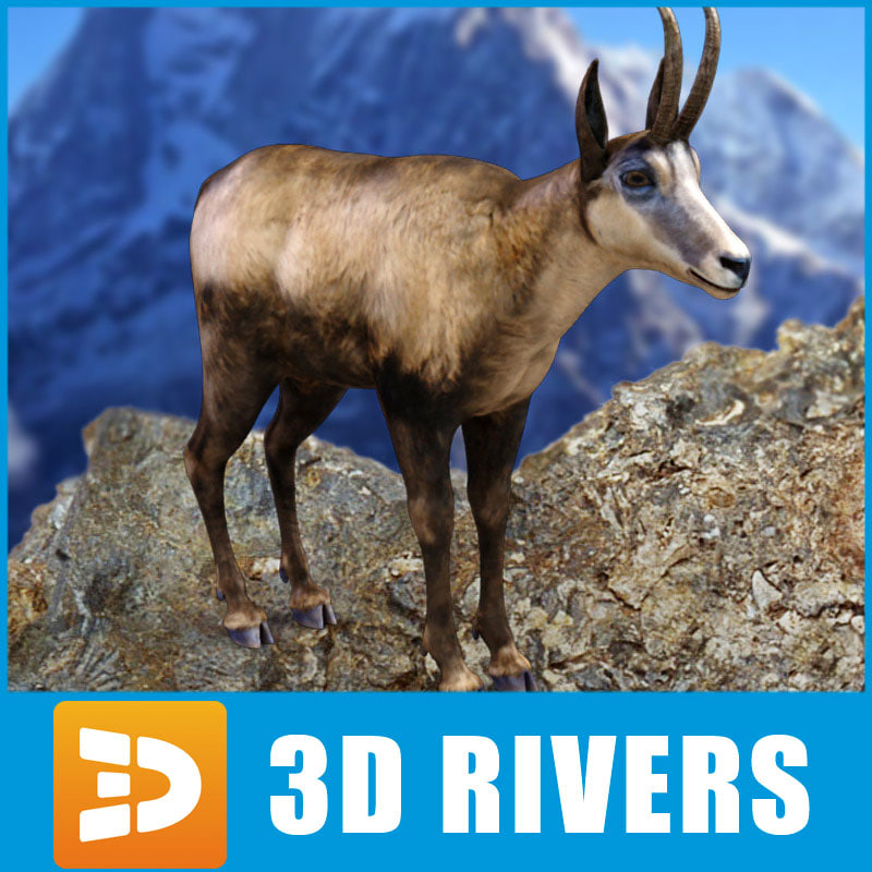 3ds chamois mountains european