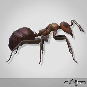 3ds ant modeled