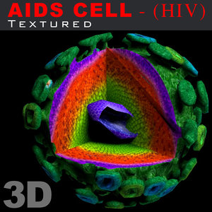 3d model aids hiv cell