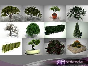 3d plants d2 tree model
