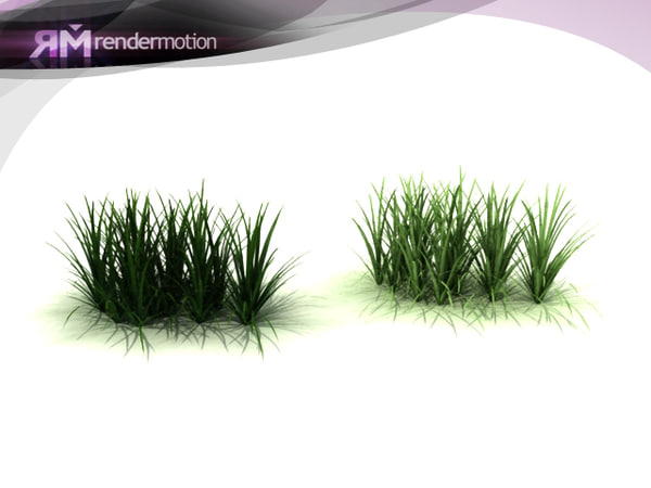 d2 c1 26 lemongrass-pasto 3d model
