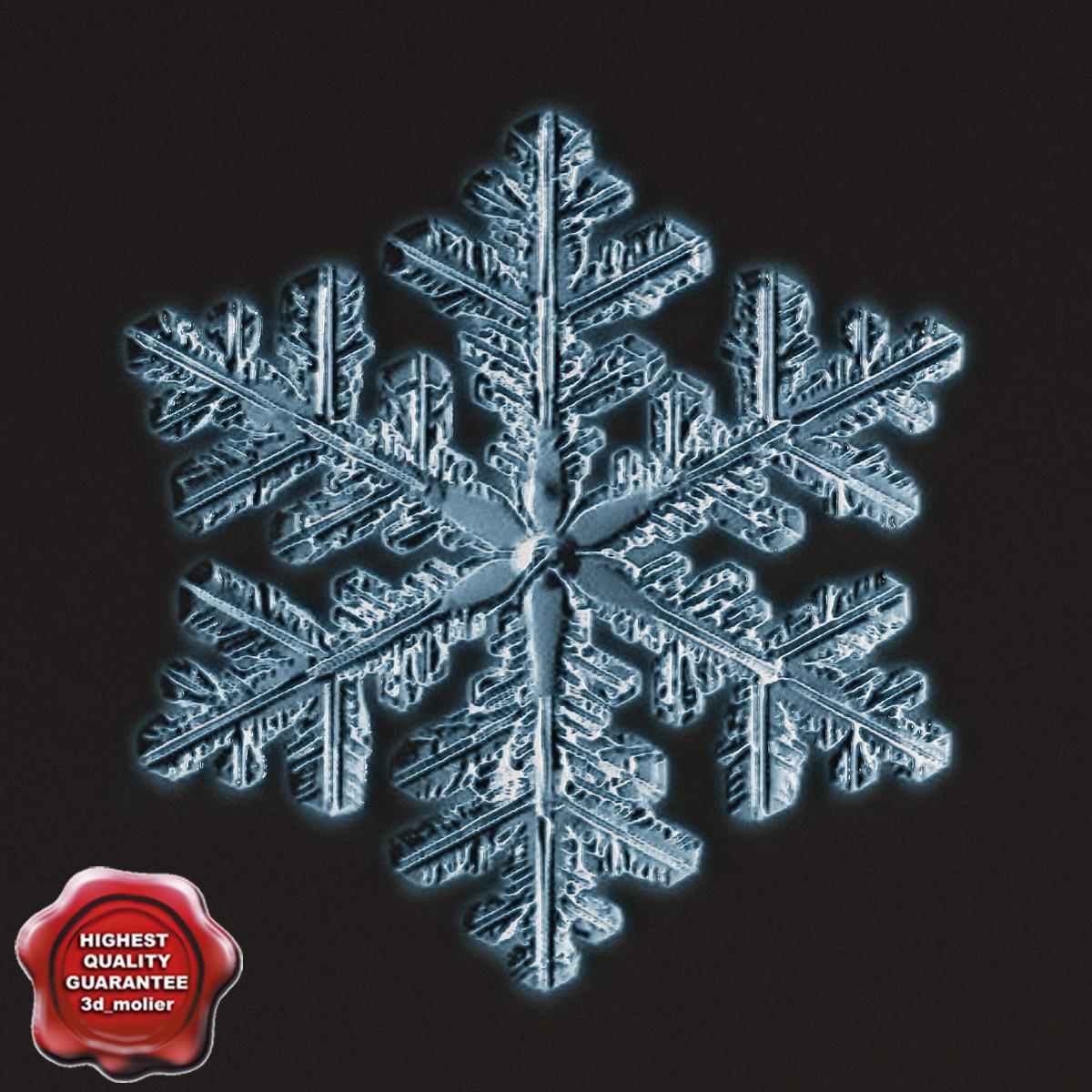 snowflake v7 3d model