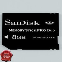 3ds max memory card ms pro