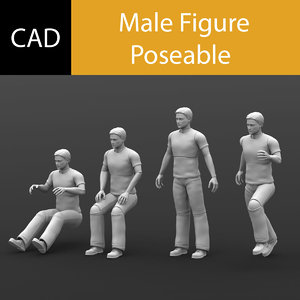 3d poseable male solidworks cad