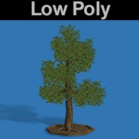 PL Low Poly Elm Tree