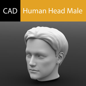 male human head solidworks 3dm