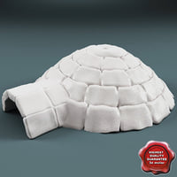 3d igloo modelled