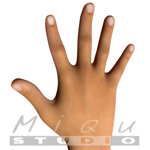 human hand 3ds free