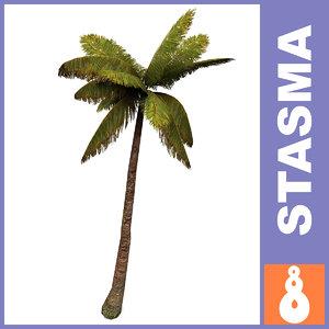 palm levels max
