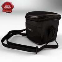 camcorder bag finepix 3d 3ds