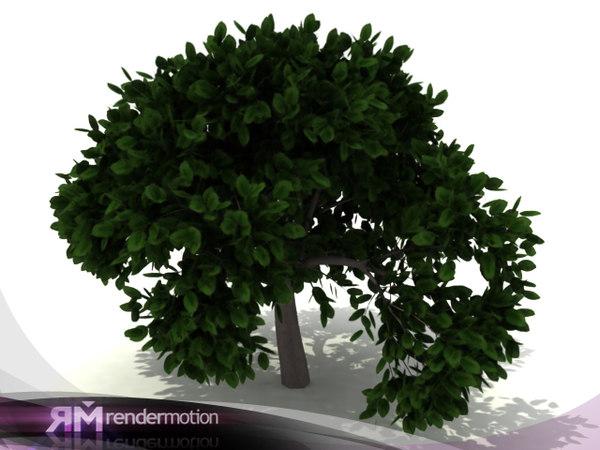 3d max tree