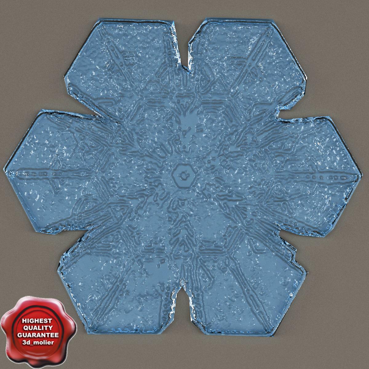 max snowflake v3