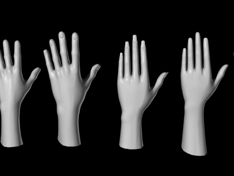 free human hands feet foot 3d model