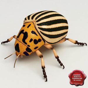 3ds colorado potato beetle