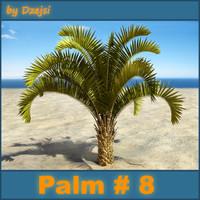 Palm # 8