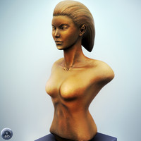 max female bust