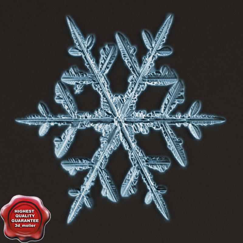 3d snowflake v6