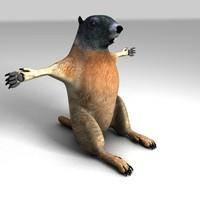 marmot 3d model