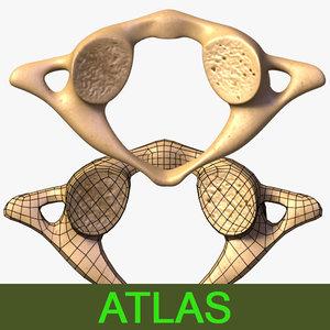 3d model vertebra atlas