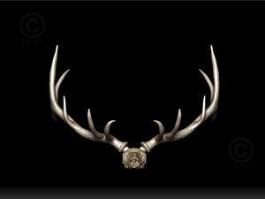 elk skull antlers 3d obj